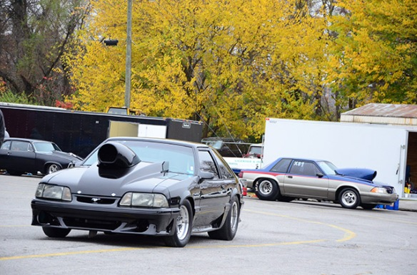 Outlaw Mustangs
